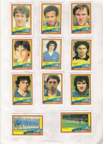 1988 Euro cup
